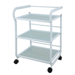Camilla 3 Shelf Metal and Glass Trolley (1013)