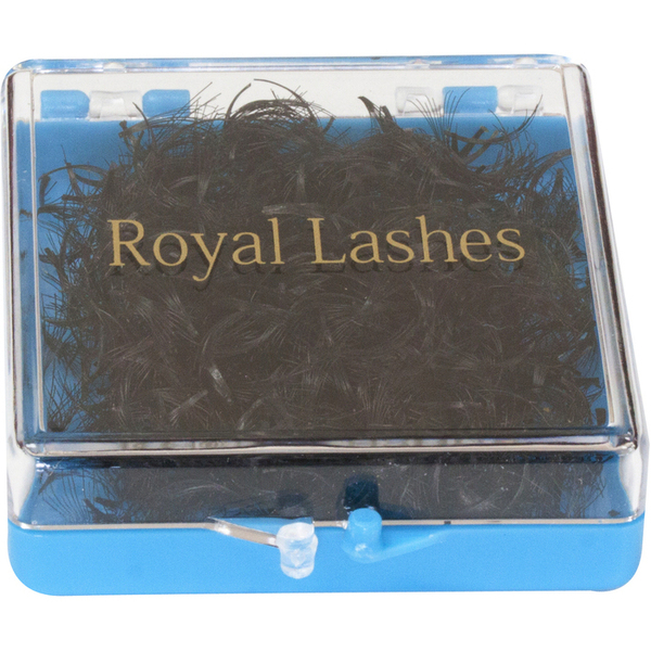 QL Royal Lashes - 10 Strands Flare 1000 Pieces - Light Blue Box (QL 8550)