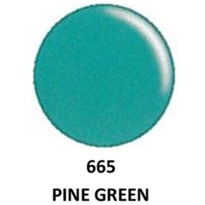DND Duo GEL Pack - G665 Pine Green 1 Gel Polish 0.47 oz. + 1 Lacquer 0.47 oz. in Matching Color (23615665)