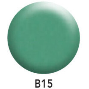 SNS Basics 1+1 - Matching Gel and Nail Lacquer Duo 0.5 oz Each - #B15 (DS83) (#B15 (DS83))