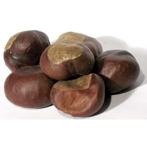 Buckeyes Whole 1 Lb. (HBUCEWB)