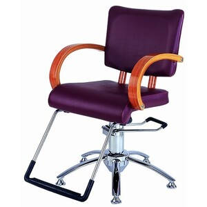 Spa Masters Marietta - Salon Styling Chair Custo