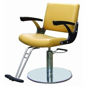 Spa Masters Alisa - Salon Styling Chair Custom O