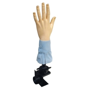 Celebrity Manicure Hand W2 Way Holder (BX917)