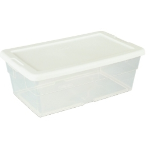 DL Professional Clear Storage Container (1642)