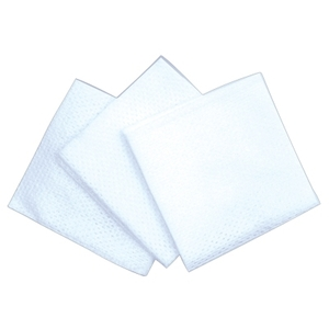 Fantasea 2X2 Non-Woven Wipes 200Pack (FSC504)