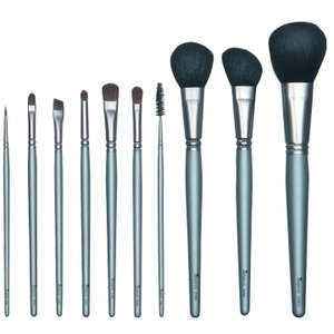 10 Piece Cosmetic Brush Set (DMBDEAL2)