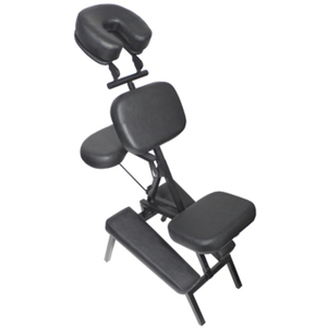 Adjustable Massage Chair (FSC-909)