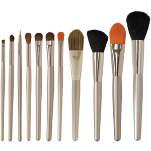Cosmetic Brush Set 11 Piece Set (FSC539)