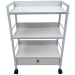The Hailey Esthetician Trolley 3 Shelves + 1 Drawer (XY-640-07)