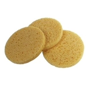 Non-Compressed Sponge 10 Pack