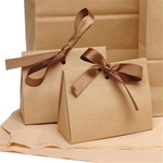 Purse Style Gift Certificate Holder with Ribbon / Kraft (CZ653)