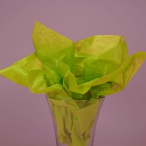 "Aloe Tissue Paper 20""x30"" 480 sheet (CZ396)"