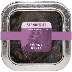 White Lion Tea - Slenderize (Lean Genes) Tea 5 Count Tin of Pyramid Sachets