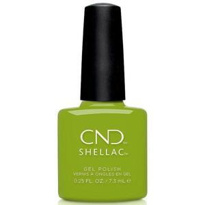 CND Shellac - Autumn Addict Collection - Crisp Green 0.25 oz. - The 14 Day Manicure is Here!
