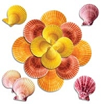 Sea Shells For Massage Various SzClr Approx 30