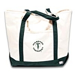 Mt Canvas Tote Bag - Natural With Forest Trim (344