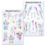 Trigger Point Charts Set(I & Ii) Laminated (573 00