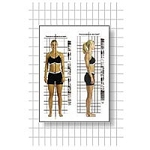 Postural Analysis Grid Chart- Original 3' X 7' (57