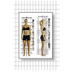 Postural Analysis Grid Chart-space Saver 2' X 6' (
