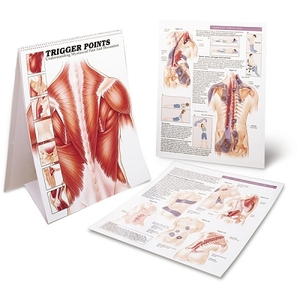 Trigger Point Desk Book - Myfascial Pain (573 0131