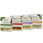Aura Cacia Electric Air Freshener Refill / Comforting Spice (016 0041 04)