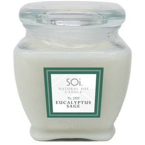 Soi Candle Eucalyptus Sage - Burn Time 140 Hours 18 oz. (253 0081 04 06)