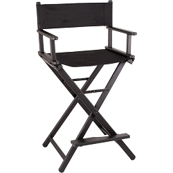 29 In Black Aluminum Director Chair (JL009AB)