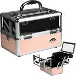 Pink 2-Tiers Extendable Trays Cosmetic Makeup Train Case With Mirror And Clear Top Panel (C0009PPPK)