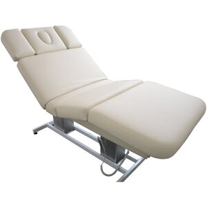 Embrace Treatment Table (11381)
