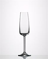 "Eisch ""Vintec"" Champagne Flute Breathable Wine Glass"