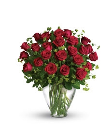 My Perfect Love - 2 Dozen Long Stemmed Premium Red Roses