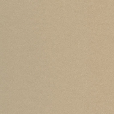 Bainbridge Conservation Basics Colors White Core Camel Matboard