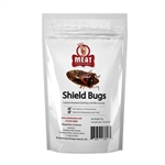 Meat Maniac BBQ Shield Bugs