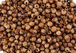 25 Grams - Navajo Ghost Beads Cedar Juniper Berries Seeds with Holes