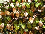 9x14mm Czech Beads Pressed Glass Leaves - Bronze Olivine