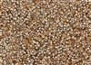 8/0 Miyuki Japanese Seed Beads with Czech Coating - Crystal Capri/Apollo Gold