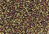 8/0 Miyuki Japanese Seed Beads with Czech Coating - Black California Violet