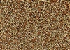 15/0 Miyuki Japanese Seed Beads with Czech Coating - Black California Gold Rush
