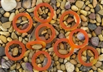5 x Beach Sea Glass 27mm Bottle-Neck Style Rings - Tangerine Orange