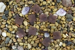 6 x Beach Sea Glass Curved Pendant Beads Flat Square 17.5mm - Medium Amethyst