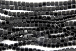 CzechMates 6mm Tiles Czech Glass Beads - Jet Black Opaque T44
