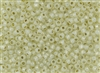 8/0 Toho Japanese Seed Beads - Permanent Finish Yellow Cream Opal Silver Lined #PF2125