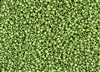 11/0 Toho Japanese Seed Beads - Hybrid Frosted Opaque Mint Green Picasso #Y321F