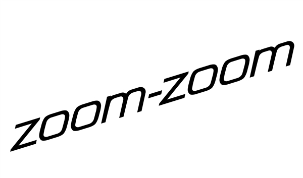 ZOOM Vinyl Decal