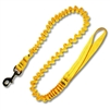 Leash w/ 1 inch Tubular Nylon Webbing