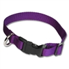 Adjustable Pet Collars in Heavyweight Polypro