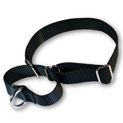 Martingale Pet Collars 1in in Nylon