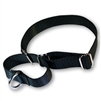 Martingale Pet Collars 3/4in in Nylon