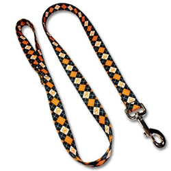 Pet Leash Collegiate